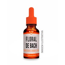 Floral De Bach Momento Do Sono 30ml