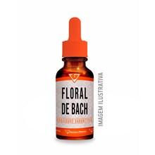 Floral De Bach P/ Fase De Irritabilidade E Intolerância 30ml