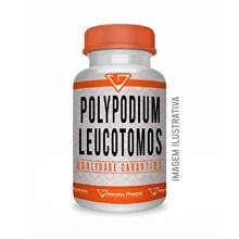 Polypodium Leucotomos 250mg + Pycnogenol 200 Mg 90 Cáps.